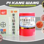 Daftar Harga Salep Pi Kang Wang Di Apotik