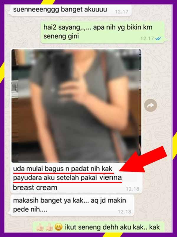 Cara Mengecek Nomor BPOM Vienna Breast Cream